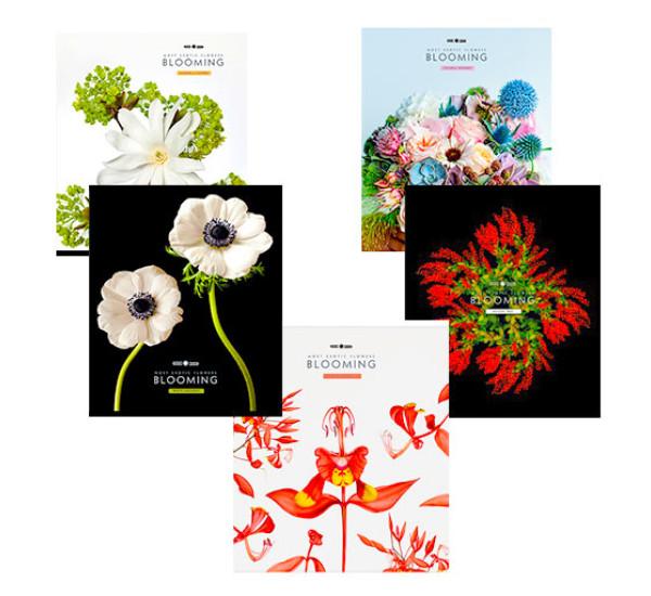 Тетрадь  Magic Lines Экзотические цветы (48 л клетка)