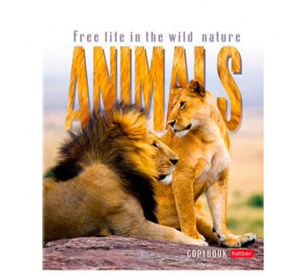 Тетрадь 48 л клетка Animals (Hatber)
