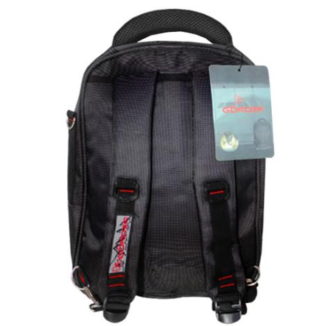 Рюкзак школьный Gorder T-215 ГХ