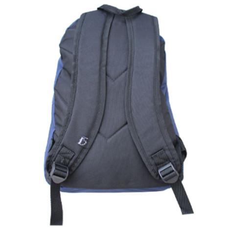 Рюкзак школьный Hedgebag